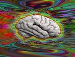 Acute harms and management of Synthetic Cannabinoid Receptor Agonists and new hallucinogens